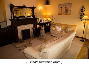 Guests Television Room